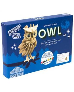 Construction Club Owl & Paint Set